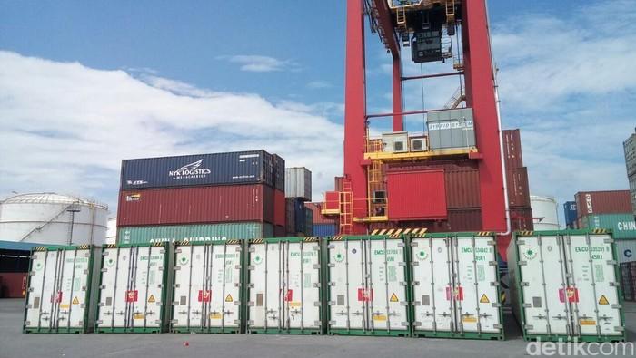 Jeroan sapi ilegal di dalma kontainer yang dikirim dari Australia