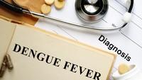 Riset: Pernah Demam Berdarah Bisa Punya Imunitas Lawan COVID-19