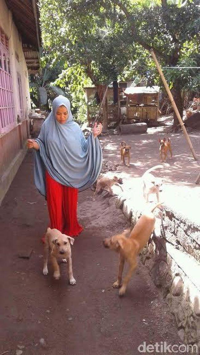 Desy Perempuan Berjilbab Rawat Anjing Saya Percaya