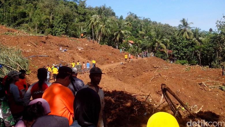 Penampakan Longsor di Purworejo: Bukit Amblas, Pohon-pohon Terseret Tanah
