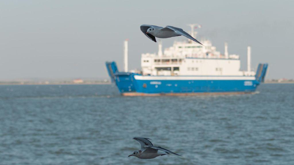 Ada ABK WNI Meninggal, Kapal Berbendera China Digiring Polisi ke Kepri