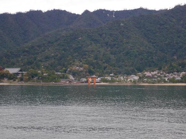Selain Hiroshima Peace Memorial Park, Pulau Miyajima juga menarik dikunjungi saat traveling di Hiroshima, Jepang. Miyajima bisa dicapai dengan naik ferry sekitar 10 menit dari Pelabuhan Miyajimagushi (Kurnia/detikTravel)