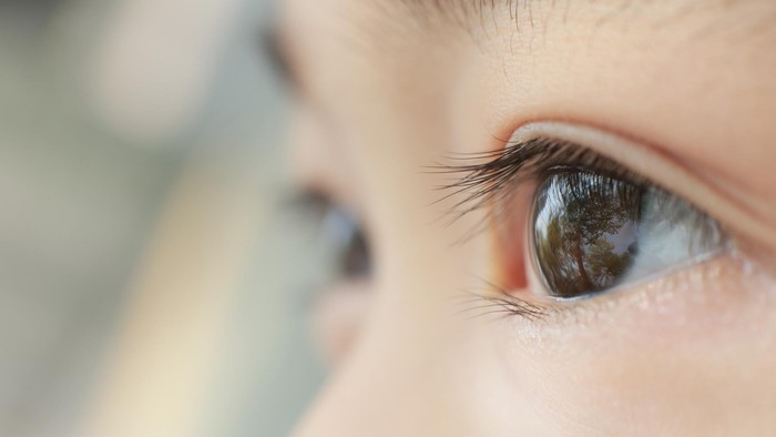 Retina terbakar akibat sinar laser. Foto: ilustrasi/thinkstock