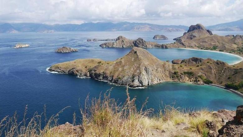 Foto: Pemandangan Pulau Padar dari ketinggian (Kurnia/detikTravel)