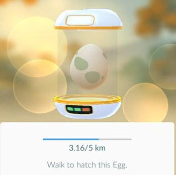 Tak Ada Batas Pasti Jumlah Maksimal Konsumsi telur per Hari, Benarkah?