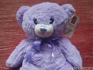 Tiap Keluar Rumah Ibu Ini Selalu Bawa Boneka Beruang, Kenapa Ya?