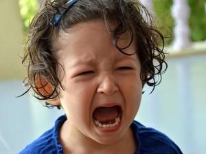 Apa yang Paling Sering Bikin Balita Rewel?