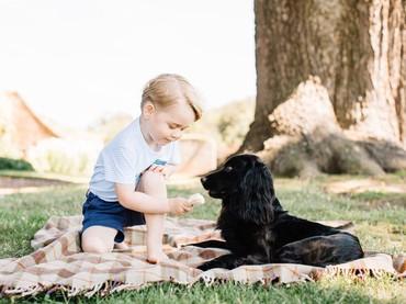 Wah, sedang asyik bermain dengan anjingnya. (Foto: Twitter/KensingtonPalace)