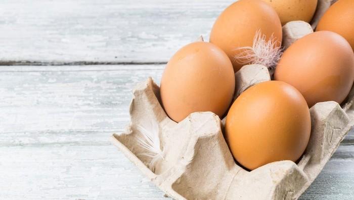 207 juta telur ayam di AS ditarik karena terkontaminasi bakteri Salmonella. Apa bahayanya? Foto: iStock