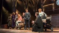 Harry, Ginny, Ron, dan Hermione bersama anak-anak mereka. (dok. Manuel Harlan)