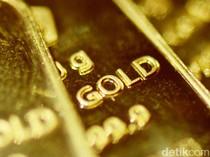 Skandal Impor Emas Rp 47,1 T Disorot DPR, Ini Penjelasan Bea Cukai