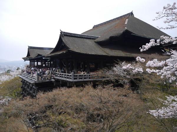 Kuil Kiyomizu Dera jadi destinasi bersejarah di Kyoto, Jepang. Kuil ini didirikan 1.200 tahun yang lalu tanpa paku, sehingga menjadi situs warisan dunia UNESCO. (Kurnia Yustiana)