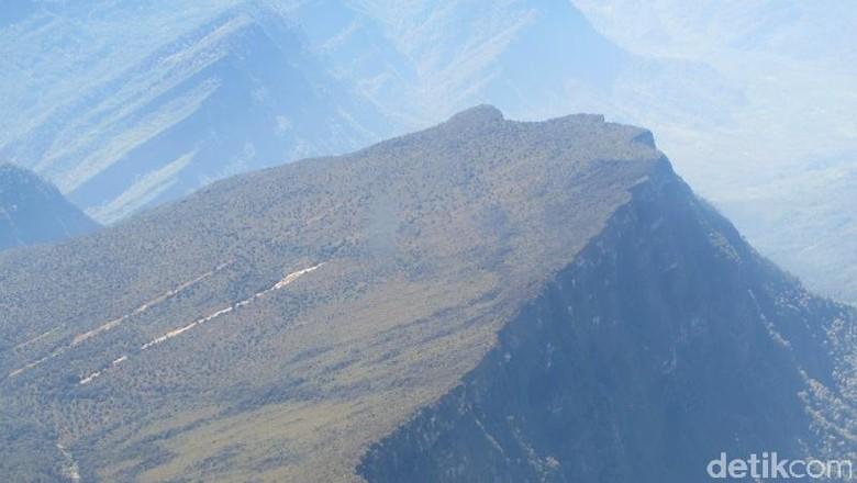 Tangga menuju ke Surga di Pegunungan Cartenz, Papua