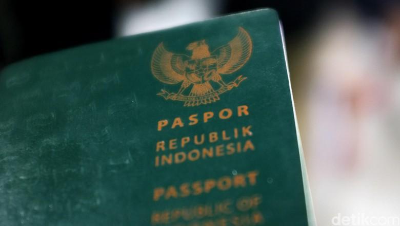 Ilustrasi paspor Indonesia (Dikhy Sasra)