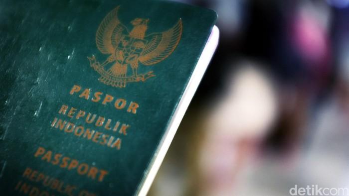 Paspor Indonesia. dikhy sasra/ilustrasi/detikfoto