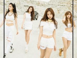 Chukhae! BLACKPINK Raih 200 Juta Penonton di MV As If Its Your Last