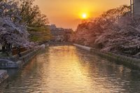 Libur Akhir Tahun di Jepang, Kunjungi Tempat-tempat Ini