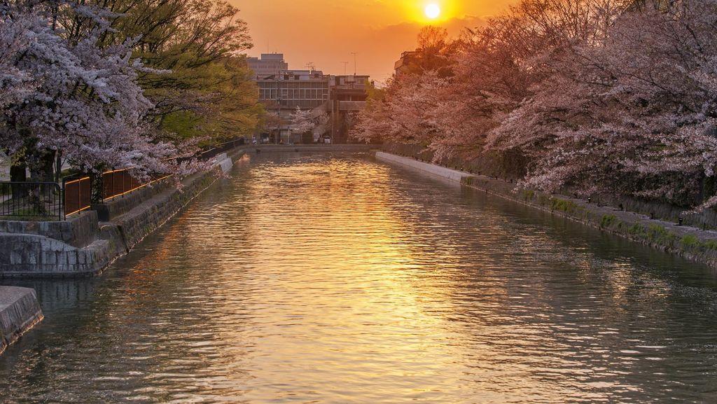 2 Hari yang Romantis di Kyoto