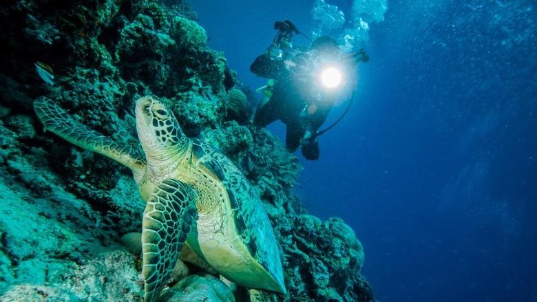 Kenapa Air Laut Asin? (Foto: Thinkstock)