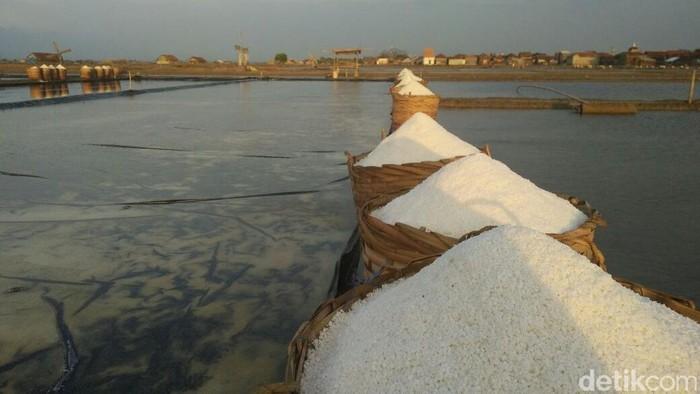 Pabrik Garam di Jepara