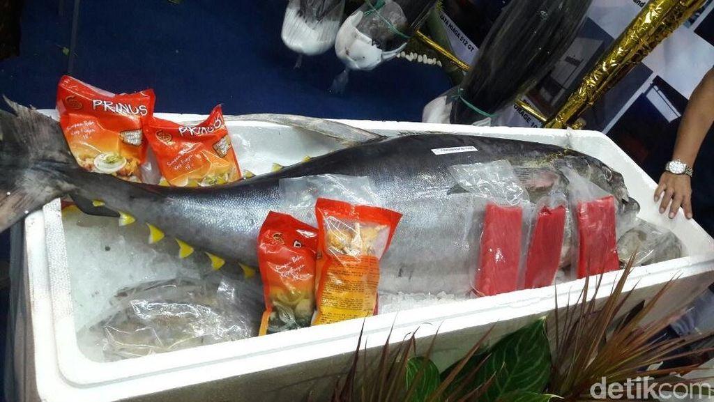 Ini yang Bikin Ongkos Angkut Ikan Timur-Barat Indonesia Mahal