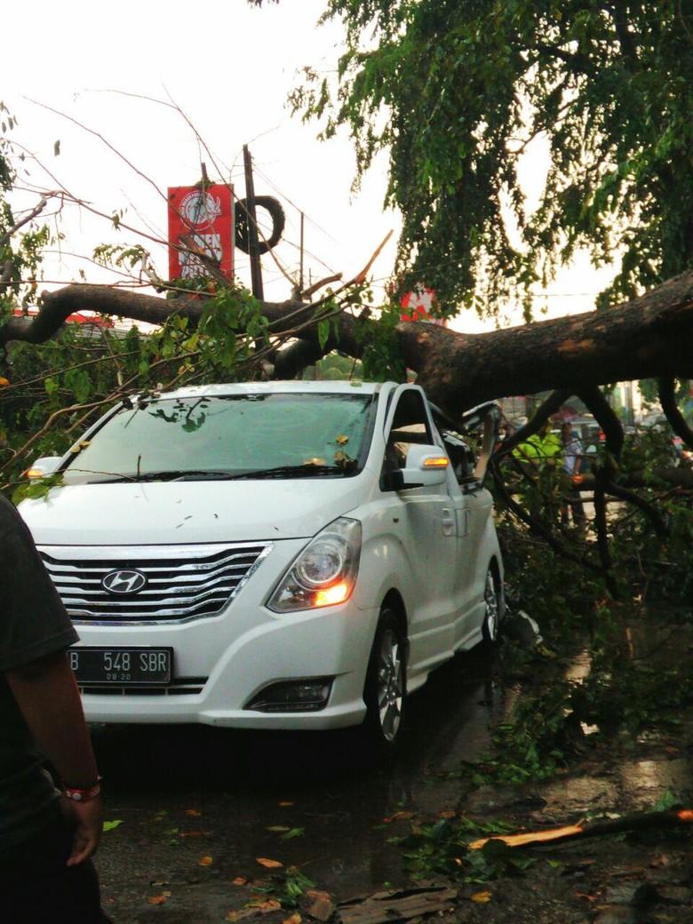 Hyundai H-1 Ditimpa Pohon Tumbang di Tanah Baru Depok