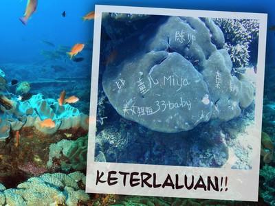Digurat Turis Nakal, Karang di Bali Terancam Mati!
