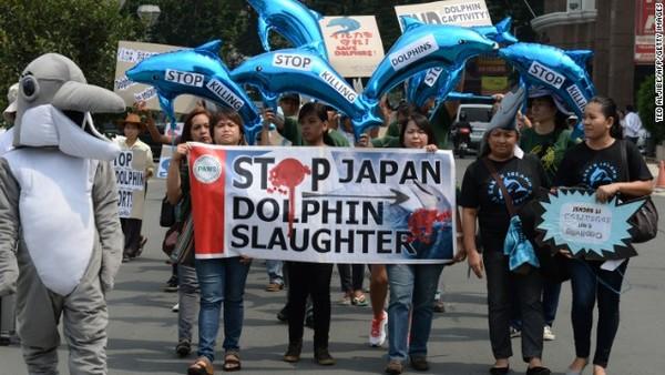 Pemerintah Jepang sudah sejak lama diminta bertindak tegas untuk menghentikan perburuan lumba-lumba di Taiji. Namun hingga kini, belum ada titik terang (CNN/AFP)