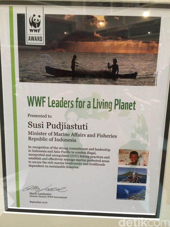 Penghargaan dari World Wildlife Fund (WWF) yang diterima Menteri Susi Pudjiastuti di Washington DC, AS. (Foto: Fajar Pratama/detikcom)