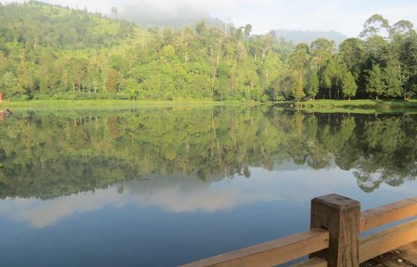 Paling enak menikmati Situ Cisanti adalah pagi hari. Jadi kamu bisa berangkat dari Kota Bandung selepas subuh, agar tidak kesiangan (Fitraya Ramadhanny/detikTravel)