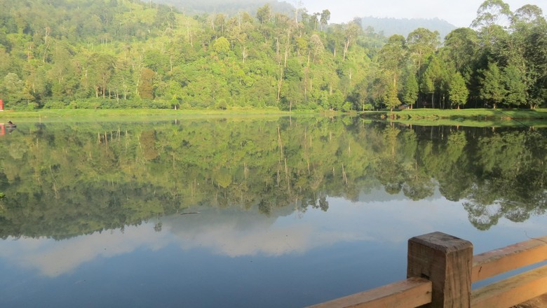 Cantiknya Situ Cisanti yang didatangi Jokowi (Fitraya/detikTravel)