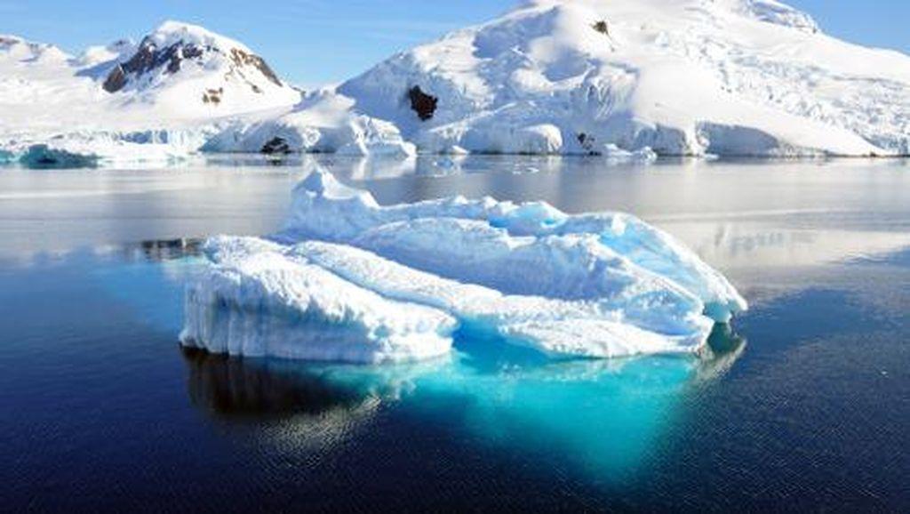 Temuan Mengejutkan Ilmuwan di Dasar Antartika