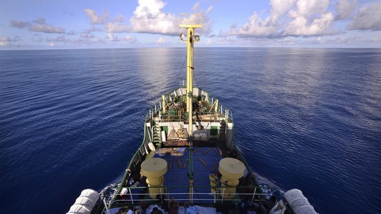 Jamin Konektivitas di Maluku. Kemenhub Operasikan 31 Kapal Perintis