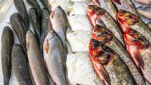 Tiga Cara Ini Bisa Jadi Panduan dalam Memilih Ikan Segar