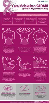 Infografis SADARI.