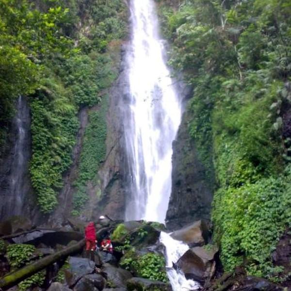 Curug Cikaracak berada di kawasan taman nasional Gunung Gede-Pangrango. Tepatnya berada di Kampung Cibeling, Desa Cinagara, Kecamatan Caringin, Kabupaten Bogor. (Muhammad Idris/dTraveler)