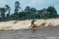 Masih di daratan Sumatera, Sungai Kampar di Riau membuktikan kalau surfing tak hanya bisa di laut. Sungai ini punya ombak yang setinggi 6 meter dengan kecepatan 40 km per jam. Surfing di sana tak main-main, hanya untuk mereka yang sudah ahlinya (Dok Kemenpar)