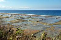 Nusa Penida, 'Surga' yang Menanti Kamu