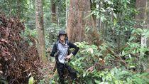 Jelajah Asyik Hutan Kalimantan Tengah dari Desa Lopus