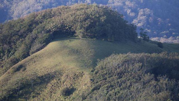 Gunung Mutis tertinggi di NTT