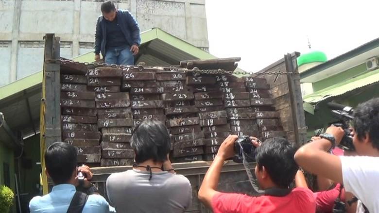 Denpom Pekanbaru Dalami Keterlibatan Anggota dalam Illegal Logging di Pelalawan