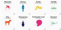 Bill Gates Paling Takut Pada Nyamuk