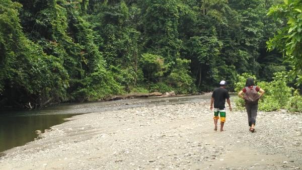 Bila ditempuh dari Waisai, diperlukan waktu kurang lebih sekitar 1 jam naik speedboat. Setelah itu, trekking masuk ke hutan sekitar 30 menit (Wahyu Setyo Widodo/detikcom)