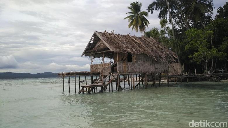 Homestay di Pulau Mansuar, Raja Ampat