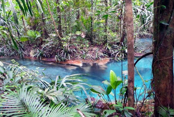 Konon katanya dahulu suku asli Teluk Mayalibit mandi di Kalibiru sebelum berperang. Mereka yang bisa tahan terhadap dinginnya air berarti sudah dinyatakan siap untuk berperang (Wahyu Setyo Widodo/detikcom)