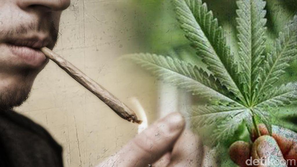 Polisi Antisipasi Peredaran Narkoba di Akhir Tahun