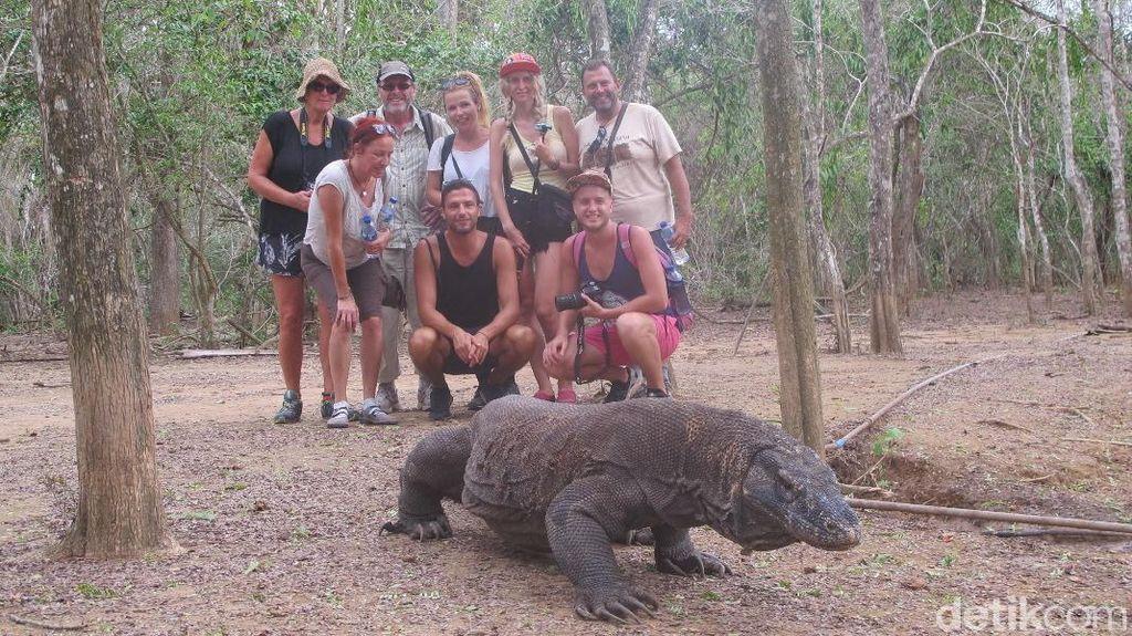 Isu Penutupan Pulau Komodo Sampai Diulas Media Inggris