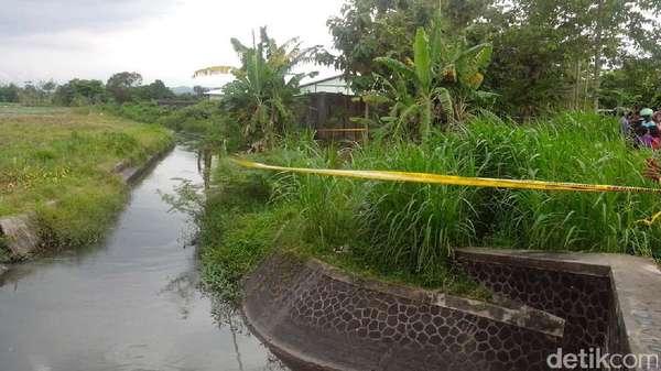 Tim Gegana Sisir Lokasi Ledakan Benda Diduga Bom yang Terinjak Kerbau