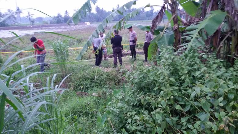 Sepekan Berlalu, Pemilik Bom yang Terinjak Kerbau di Bantul Masih Misterius