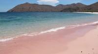 Masih di Labuan Bajo tepatnya di Pulau Komodo, kamu akan melihat pantai yang pasirnya berwarna pink. Ada Pantai Pink dan Pantai Namong yang benar-benar pink warnanya! (Afif/detikTravel)